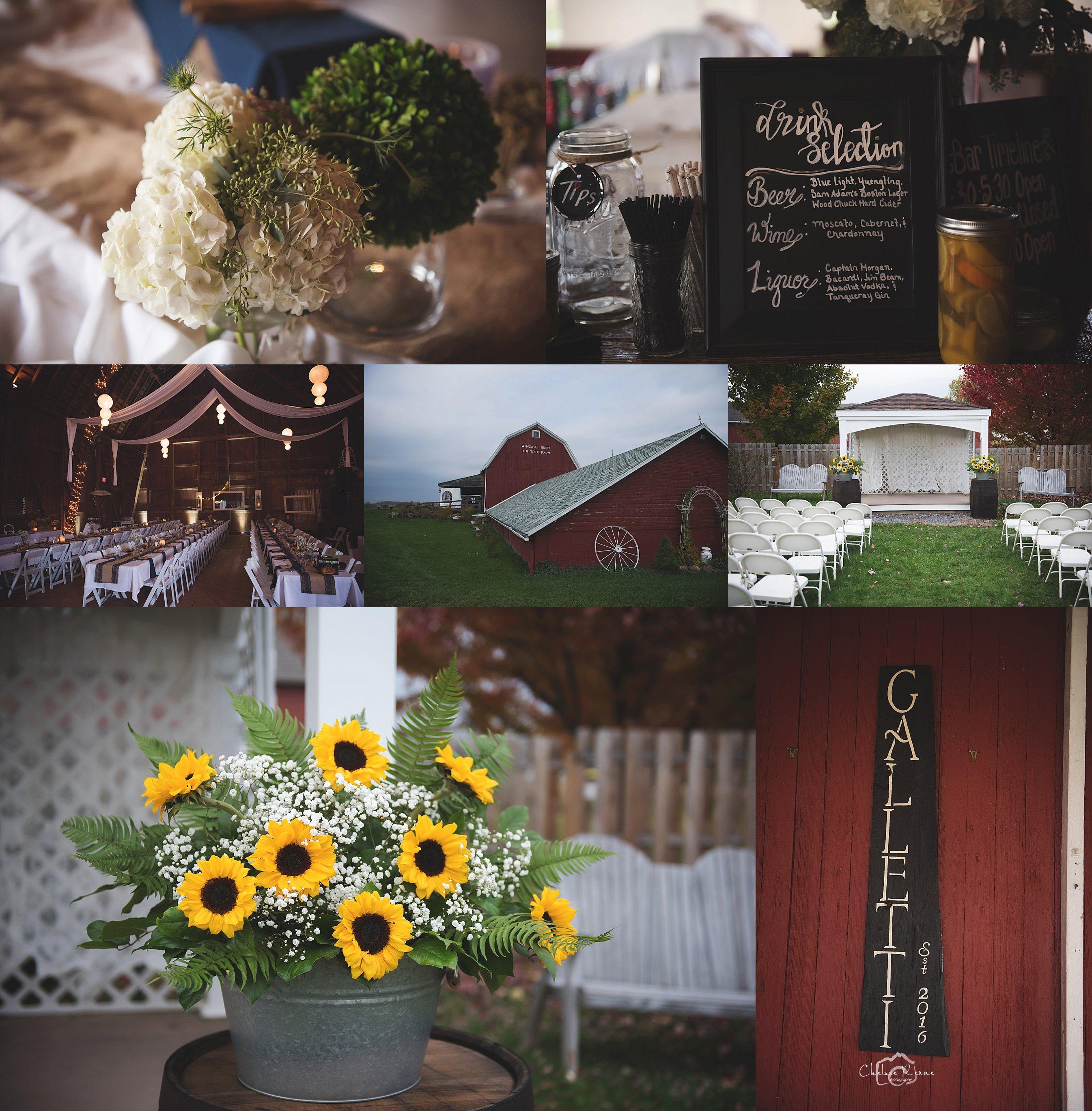 Wingate Barn Wedding Livonia NY