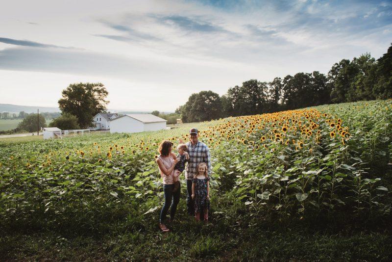 Sunflower Session